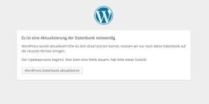 wordpress aktualisieren datenbank